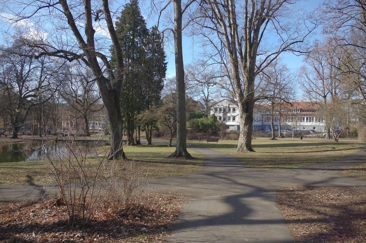 Foto eines Auschnitts des Stadtgartens mit See und Rosenhügel im Hintergrund